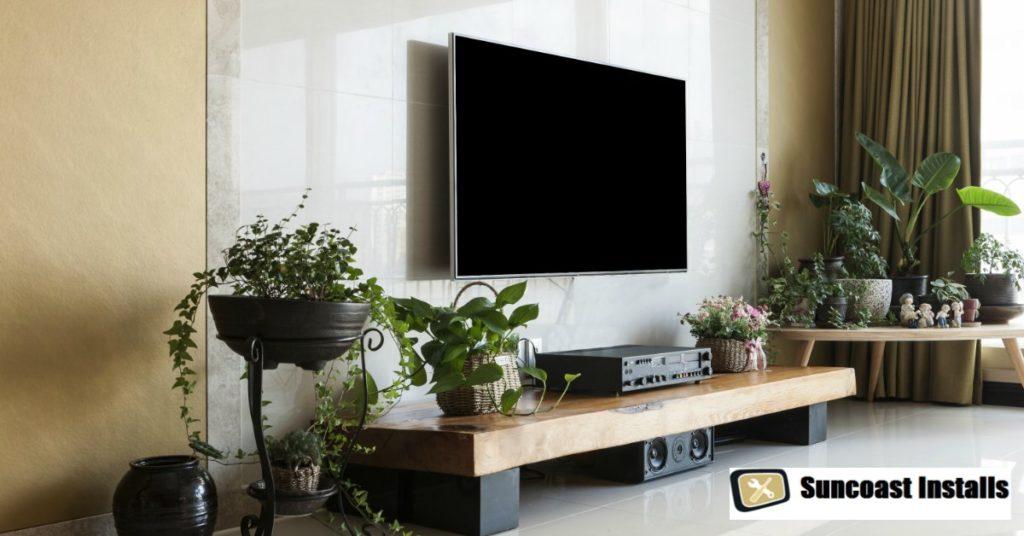 TV installation Tampa