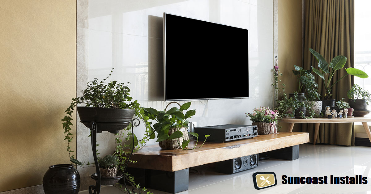 someone to mount TV on wall
