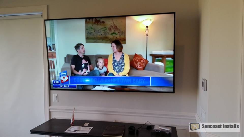 Florida tv installation
